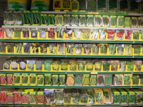 Agrigarden - Aziende Di Cerbo - Guidonia